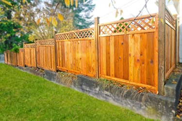 Warm timber fence stain on trellis top boundary fence