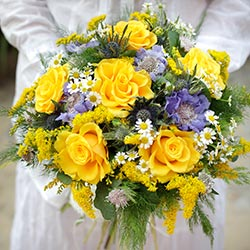 Bouquet of yellow roses offset in purple
