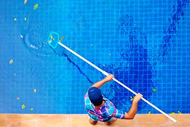 Pool cleaner uses net to scoop out leaves and debris in residential pool