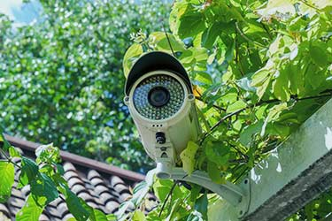 White Night-vision Camera
